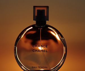 chanel, perfume, and scent image