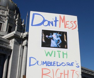 dumbledore and gay rights image