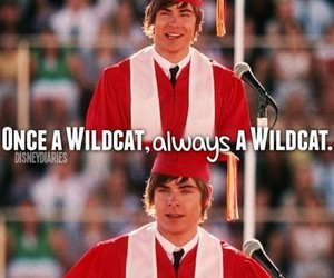 wildcats, HSM, and zac efron image