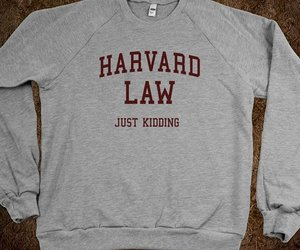 harvard, funny, and sweater image