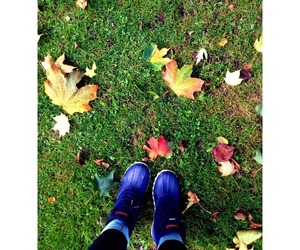 autumn, native boots, and leaves image
