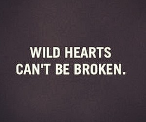 heart, quote, and wild image
