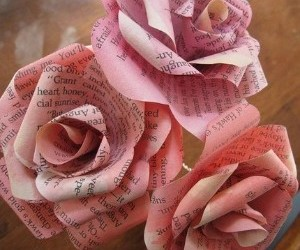 letters, rose, and words image