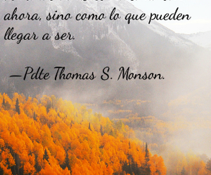 Image by Alejandra.