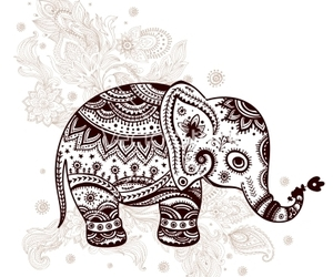 bohemian, elephant, and india image