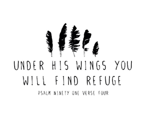 quote, wings, and refuge image