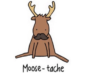 moose, funny, and lol image