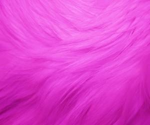 hot pink fur texture image