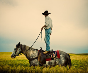 cowboy, horse, and photography image