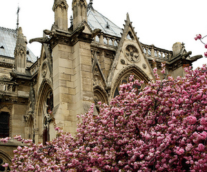 dame, flowers, and france image