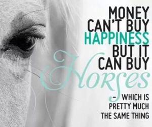 horse, happiness, and money image