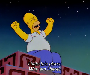 hate, simpsons, and homer image