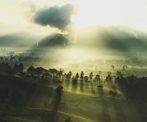 nature, photography, and sunshine image