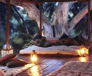 bed, jungle, and light image