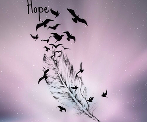 hope, birds, and feather image