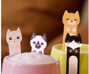 cat, kitty, and stationery image