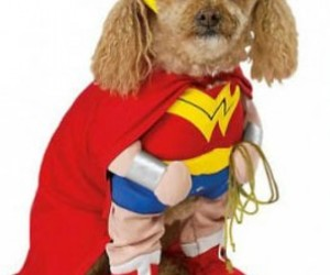 Animales, costumes, and Halloween image