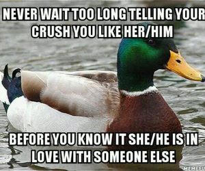advice, and, and crush image