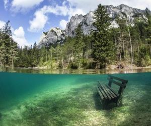 austria, nature, and underwater image