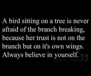 quotes, believe, and bird image