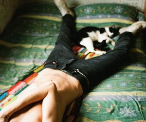 boy, cat, and bed image