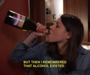 alcohol, parks and rec, and truth image