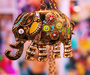 elephant, colors, and india image