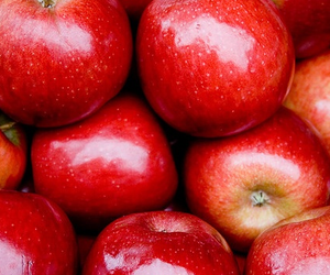 apple, photography, and red image