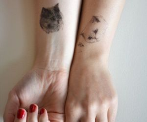 cat, tattoo, and hands image