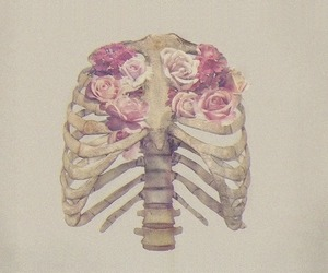 flowers, rose, and bones image