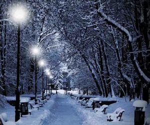 snow, winter dream, and winter image