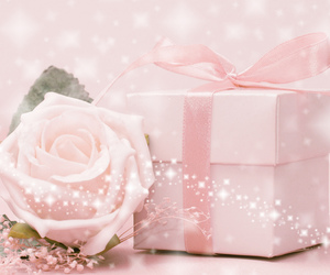 rose and gift image