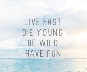 fun, quote, and quotes image