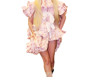Lady gaga, transparent, and art pop image