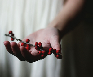 berries, flickr, and hand image