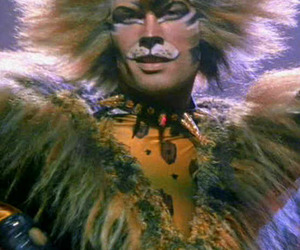broadway, cats, and meow image