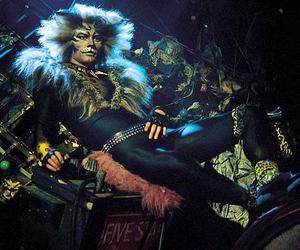 cat and rum tum tugger image