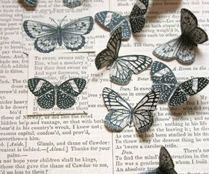 butterfly, book, and Paper image