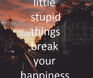 happiness, quotes, and stupid image