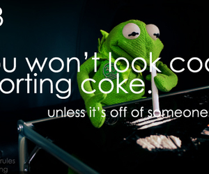 alcohol, kermit, and snow image