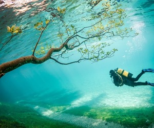 diving and inspire image