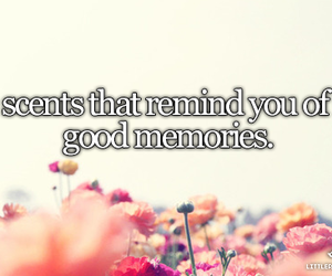 memories and scent image