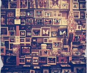 collection and wonderful image
