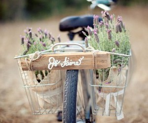 bike, flowers, and je t'aime image
