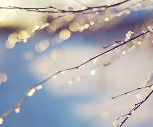 blue, snow, and christmas image