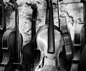black and white, music, and violin image