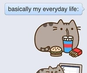 cat, life, and food image