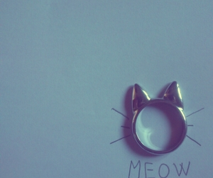cat, meow, and ring image
