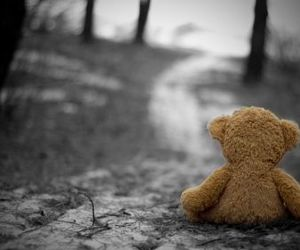 alone, bear, and sad image