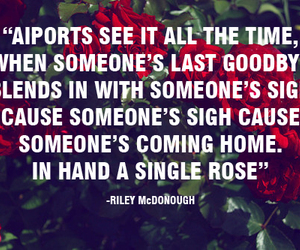 quote, roses, and before you exit image